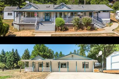 Grass Valley Single Family Home For Sale: 15166 Moore Hill Rd