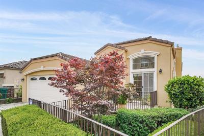 Alameda County Single Family Home For Sale: 8255 Skyline Circle