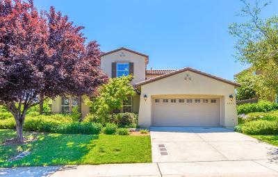 El Dorado Hills Single Family Home For Sale: 5052 Courtney Way