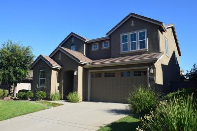 El Dorado Hills Single Family Home For Sale: 3645 Rosecrest Circle