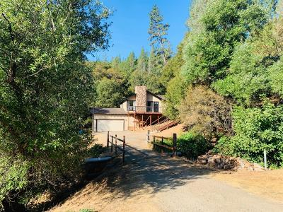 Grass Valley Single Family Home For Sale: 12173 Rainbow Road