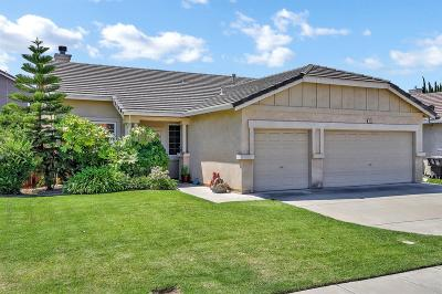 Tracy Single Family Home For Sale: 1680 Treehaven Lane