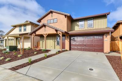 Folsom Single Family Home For Sale: 566 Willow Ridge Court