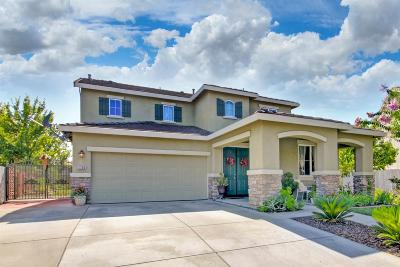 Yolo County Single Family Home For Sale: 1705 Elston Circle