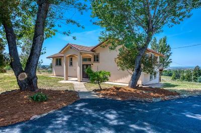 El Dorado Hills Single Family Home For Sale: 4101 Hawk View Road