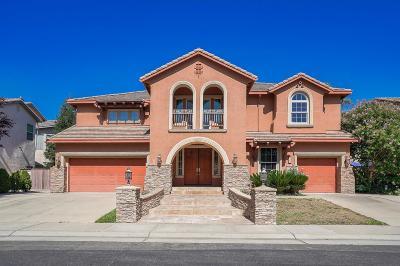 Elk Grove Single Family Home For Sale: 9867 Cortino Way