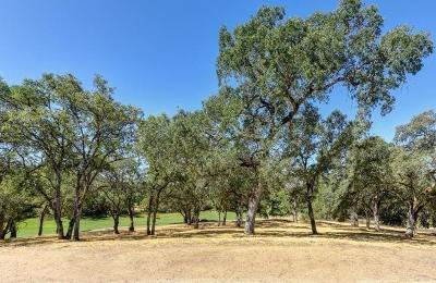 Lincoln Residential Lots & Land For Sale: 3588 Paseo Tranquilo