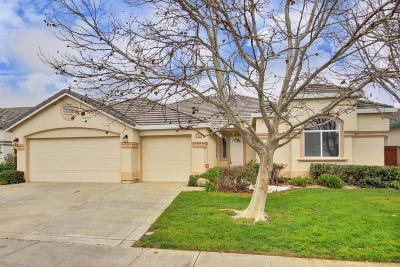 Elk Grove Single Family Home For Sale: 2701 Marina Point Lane