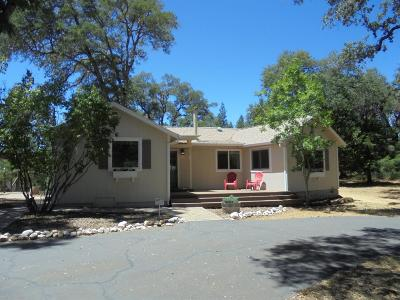 Placerville Single Family Home For Sale: 4920 Northern Lights