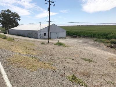 Stockton Commercial Lots & Land For Sale: 11700 West Lower Jones Road