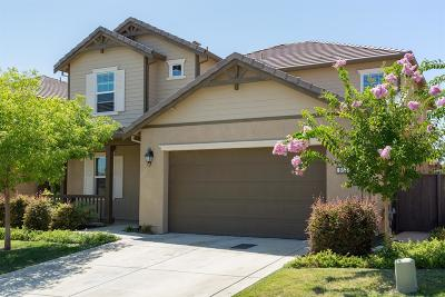 Rocklin Single Family Home For Sale: 868 Calico Drive