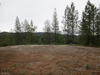Nevada City Residential Lots & Land For Sale: 16345 Gold Bug Road