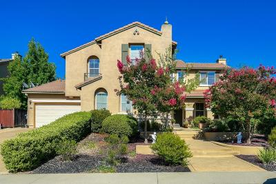 Rocklin Single Family Home For Sale: 6521 Nebula Court