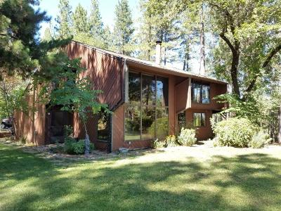 Grass Valley Single Family Home For Sale: 20359 Starlight Lane