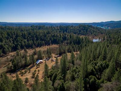 Camptonville CA Single Family Home For Sale: $899,900