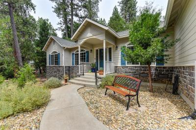 Foresthill Single Family Home For Sale: 6639 Nugget Drive
