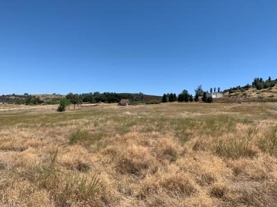 Valley Springs Residential Lots & Land For Sale: 25 North Shore Court