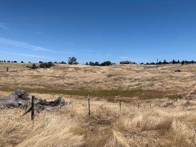 Valley Springs Residential Lots & Land For Sale: 14700 South Gulch