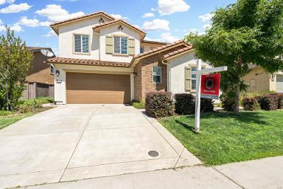 Rocklin Single Family Home For Sale: 834 Calico Drive