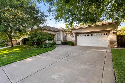 El Dorado Hills Single Family Home For Sale: 1099 Bevinger Drive