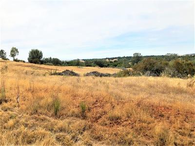Valley Springs Residential Lots & Land For Sale: 6144 Treosti