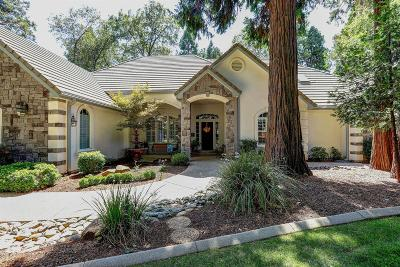 Nevada County Single Family Home For Sale: 13021 Somerset Drive