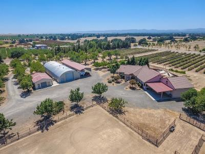 Dunnigan Single Family Home For Sale: 26480 County Rd 2