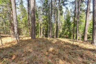 Placerville Residential Lots & Land For Sale: 4365 Fairglade Road