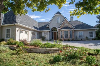 Copperopolis Single Family Home For Sale: 2135 Oak Creek Dr.