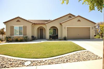 Manteca Single Family Home For Sale: 1679 Chestnut Grove Drive