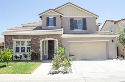 Elk Grove Single Family Home For Sale: 9933 Great Skua Way