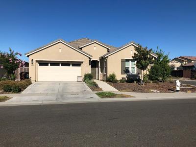Elk Grove Single Family Home For Sale: 9956 Cape Verde Drive