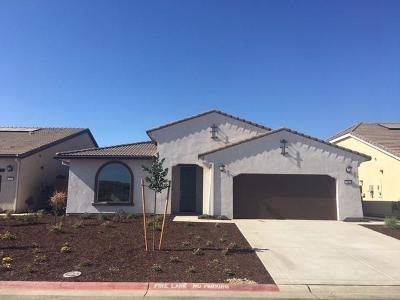 El Dorado Hills Single Family Home For Sale: 7015 Pismo Drive