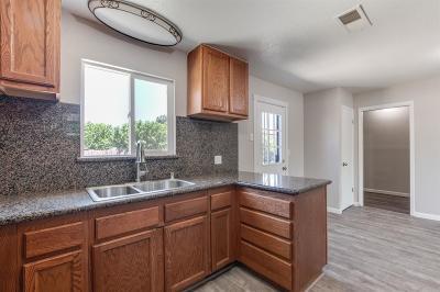 Manteca Single Family Home For Sale: 225 East Alameda Street