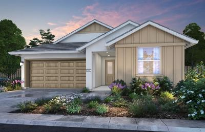 Rancho Cordova Single Family Home For Sale: 11975 Mircado Way