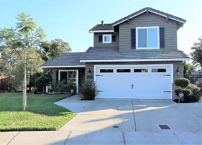 Stockton Single Family Home For Sale: 9041 Warm Springs Circle