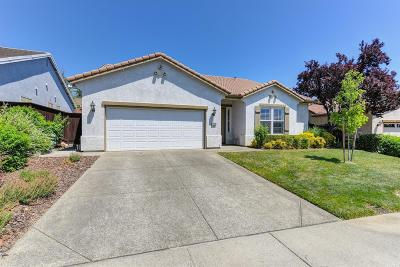 Rocklin Single Family Home For Sale: 2806 Black Oak Drive