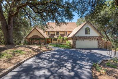 El Dorado County Single Family Home For Sale: 2815 Ivy Knoll
