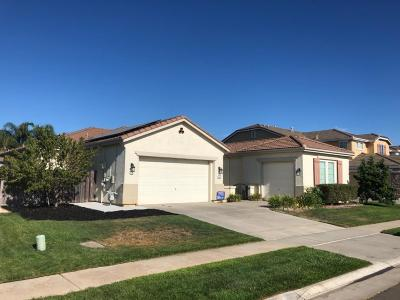 Elk Grove Single Family Home For Sale: 9844 Wyland Drive