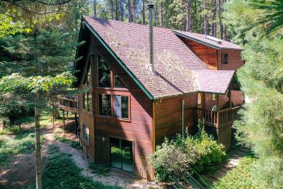Grass Valley Single Family Home For Sale: 13977 Cameo Lane