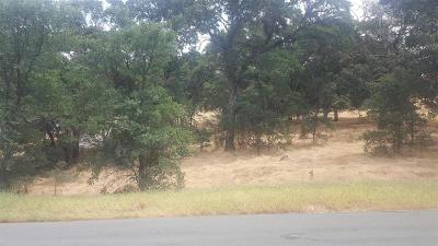 Valley Springs Residential Lots & Land For Sale: 5991 Rippon Road