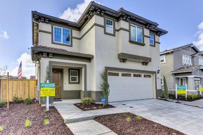 Roseville Single Family Home For Sale: 3001 Welton Circle