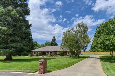 Elk Grove Single Family Home For Sale: 9001 Poplar Hollow Way