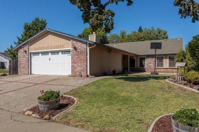 Orangevale Single Family Home For Sale: 6001 Tree Line Court