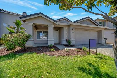 Elk Grove Single Family Home For Sale: 9649 Flame Tokay Way