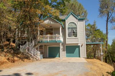 El Dorado County Single Family Home For Sale: 4507 Sunnyside Drive