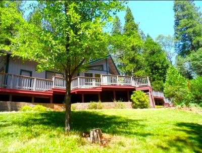 Grass Valley Single Family Home For Sale: 16243 Behr Mountain Road
