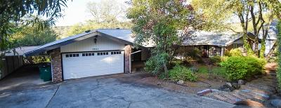 El Dorado County Single Family Home For Sale: 3251 Cessna Drive