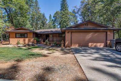 Colfax Single Family Home For Sale: 950 Pine Hill Road