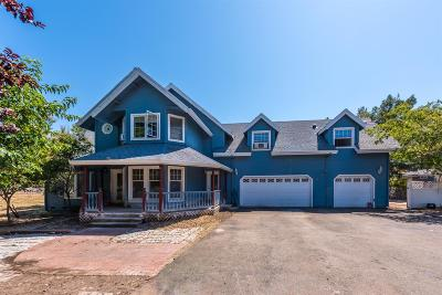 El Dorado County Single Family Home For Sale: 4767 Lonesome Dove Dr.